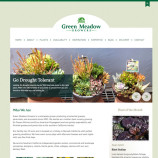 Green Meadows Website